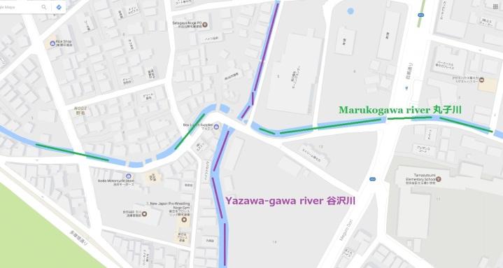 Yazawagawa and Marukogawa river intersection Tokyo